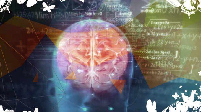 Como Se Moldea El Cerebro