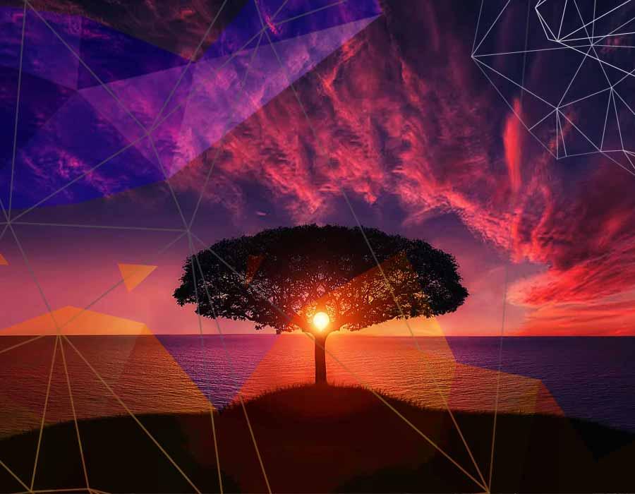 entrena tu mente con la meditación