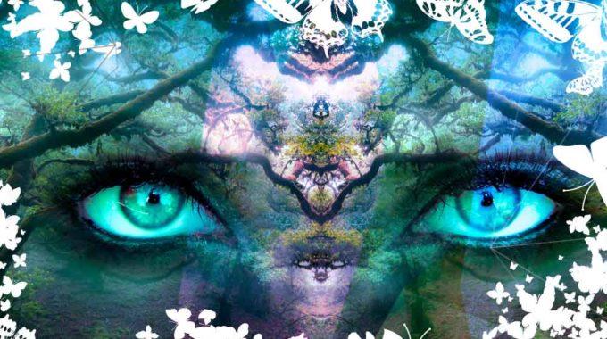 Elevar La Consciencia Con Tu Mente Cuántica